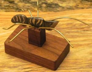Kiridashi assasin bug - right side