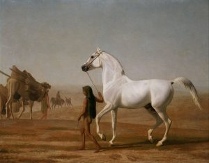 767px-Jacques-Laurent_Agasse_-_The_Wellesley_Grey_Arabian_Led_through_the_Desert_-_Google_Art_Project