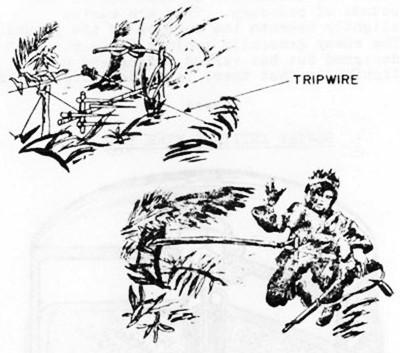 Trap Tuesday: Whip Traps