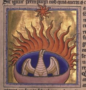 Phoenix illumination miniature from the Aberdeen Bestiary